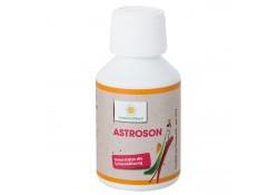 Sonnenmoor Astroson